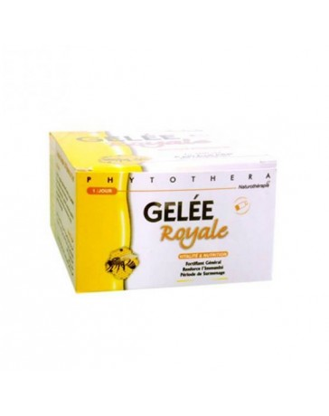 PHYTOTHERA GELEE ROYALE - 20 Ampoules