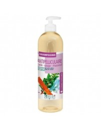 GRAVIER shampoing ANTI-PELLICULAIRE 250ML